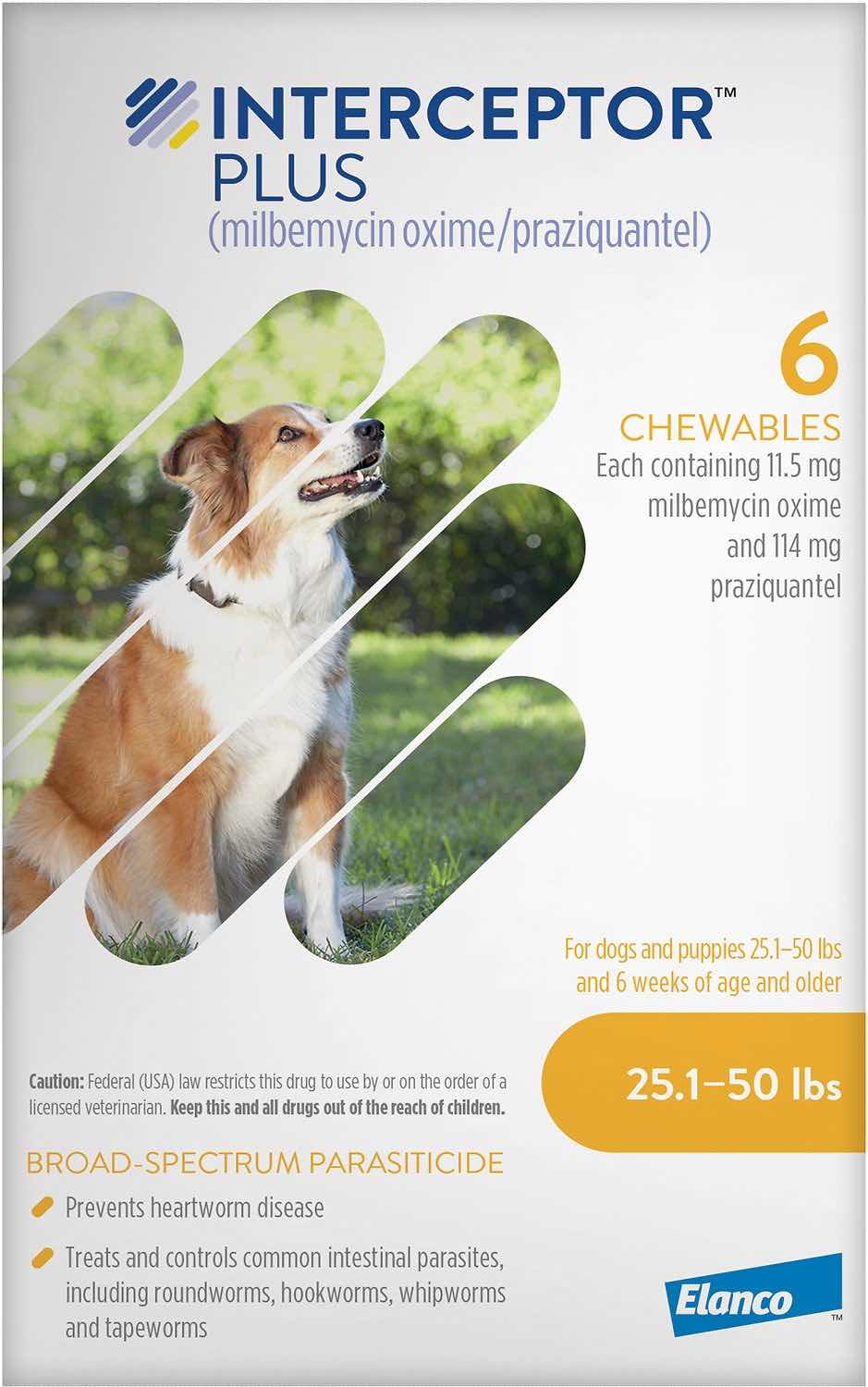 Interceptor Plus 6 chewables for dogs 25.1-50 lbs (Yellow) 1