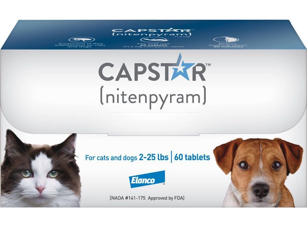 Capstar 60 tablets for cats 2-25 lbs (Purple) 1