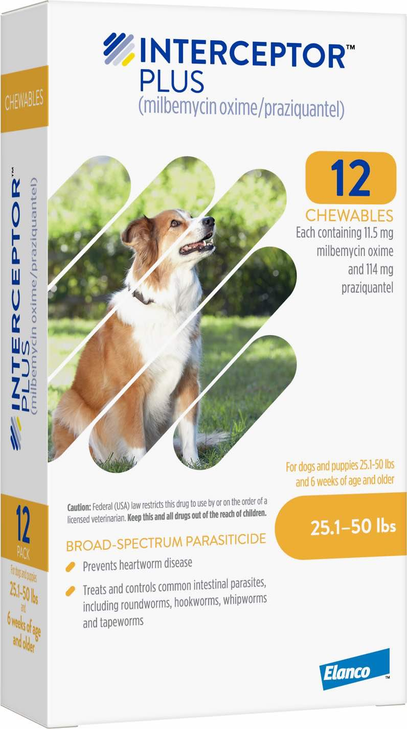 Interceptor Plus 12 chewables for dogs 25.1-50 lbs (Yellow) 1