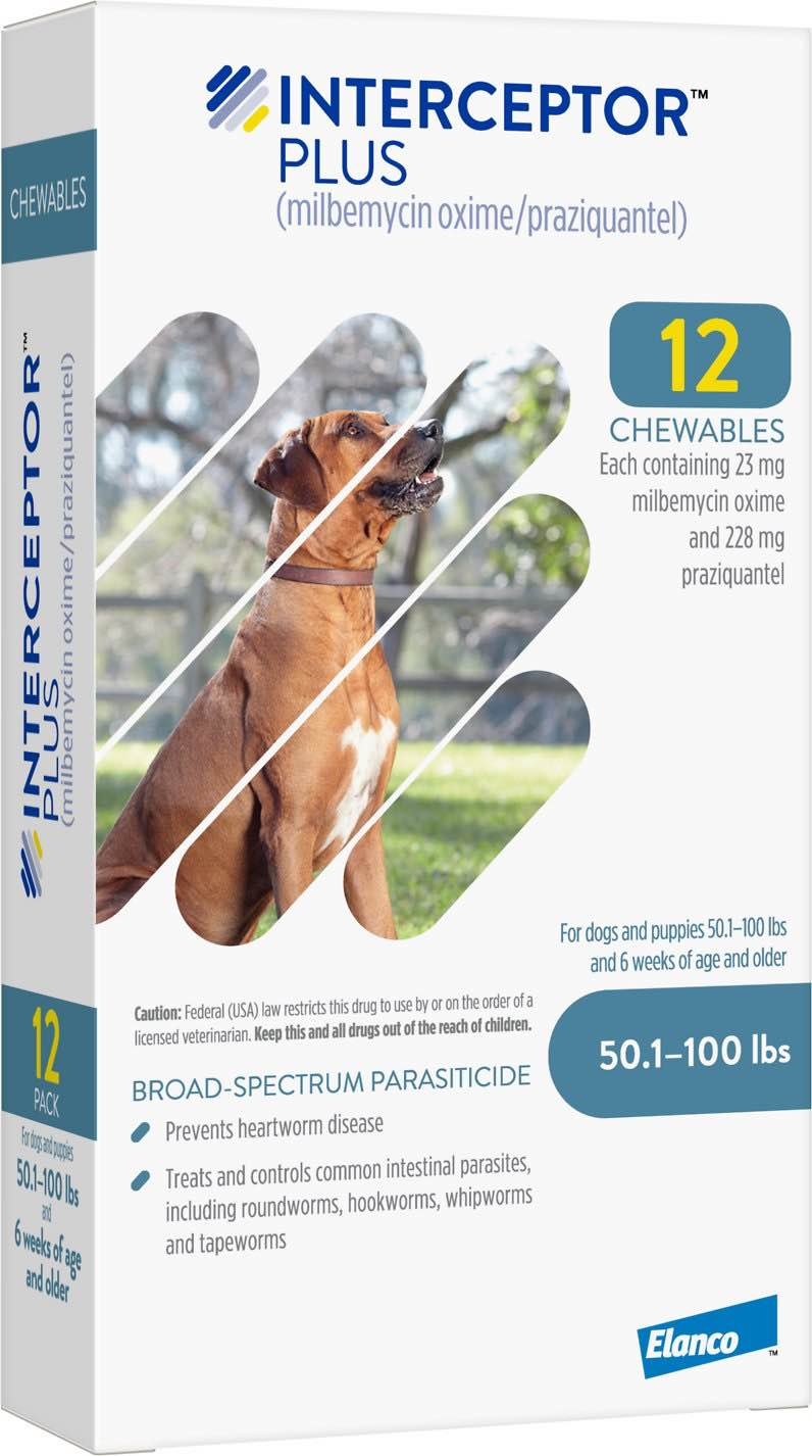 Interceptor Plus 12 chewables for dogs 50.1-100 lbs (Blue) 1